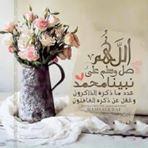 محمود زيزو_163282